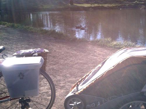 Donkey Boxx By The Lake